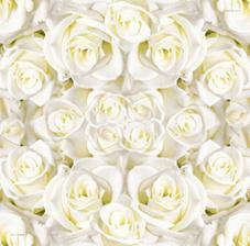 .... tak a práve som sa rozhodla že nebudú bielo-zlaté servítky, ale tieto krásne ružičkové....k nim som totižto vyrábala menu kartičky a menovky s ružičkovým podkladom :)))