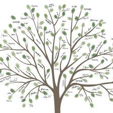 takovýhle stromeček bych chtěla místo knihy hostů