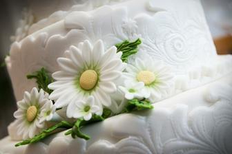 Květiny v detailu.