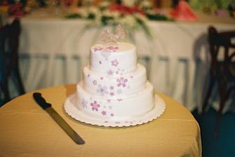 výborný dort! mňam..
