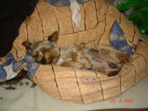 Naše spící miminko :o)