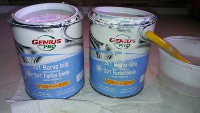 Obyč. farba z Baumaxu za cca kus po 9,8 € (GENIUS PRO - 2v1 Farba biela, lesklá, vodou riediteľná - na drevo, kov, plasty)