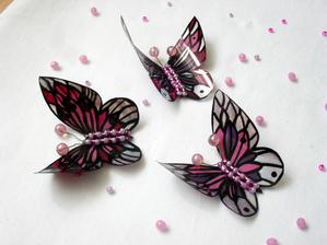 Motýlci z petek pro další využití