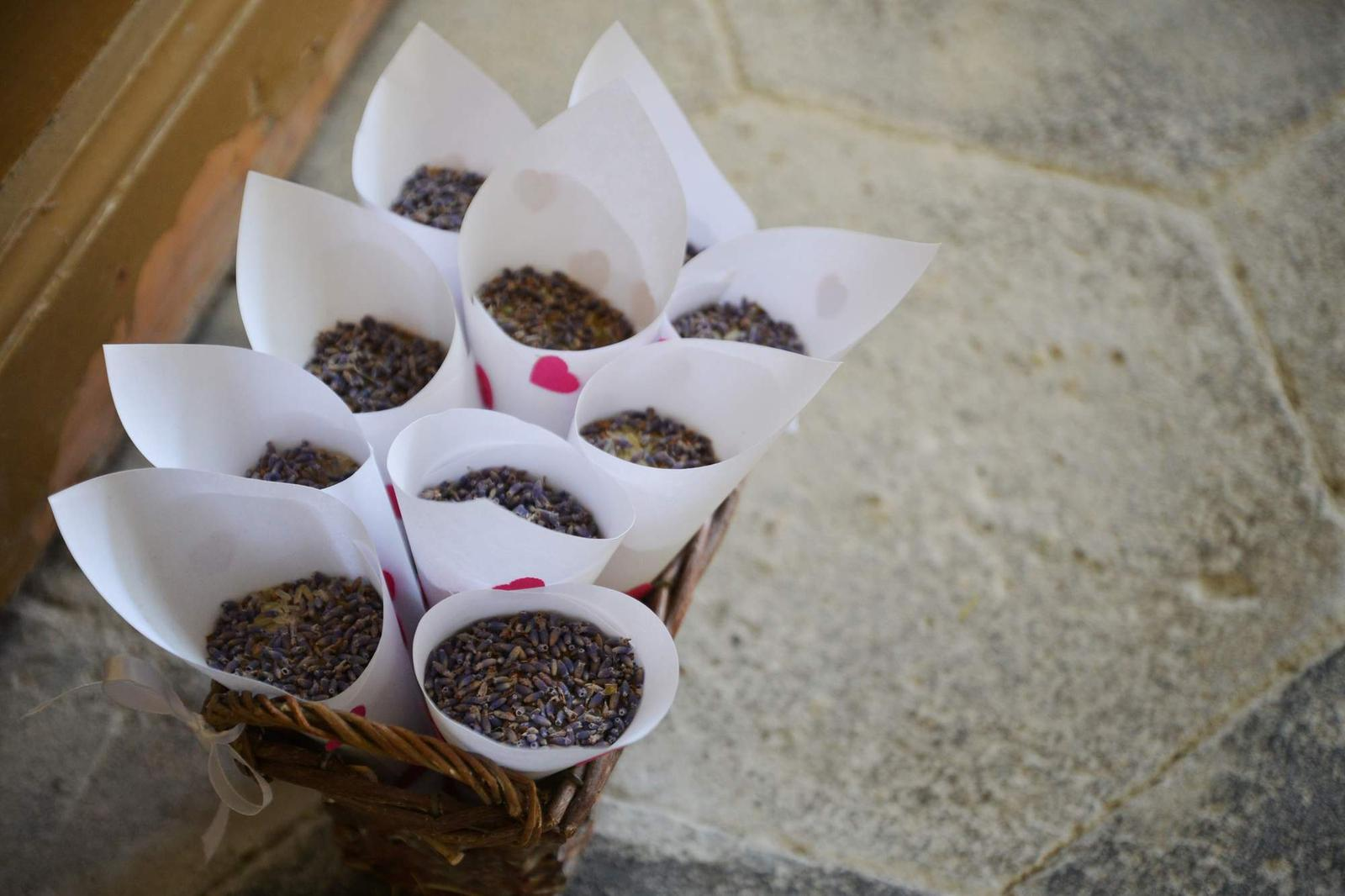Lada{{_AND_}}Pavel - Levandule s rýží