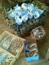 Distribuce koláčků :-)