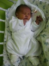 Honzíček se nám narodil 16. 3. 2008...