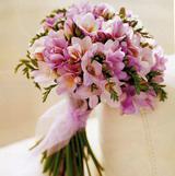 Svatební kytici budou dominovat frézie - bílé a růžové