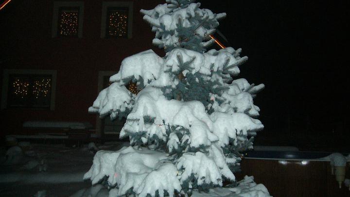 Vánoce 2010 - Obrázek č. 22