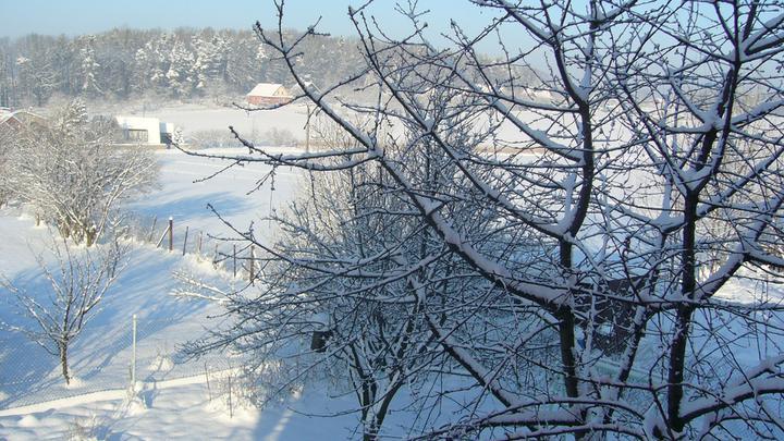 Vánoce 2010 - Obrázek č. 14