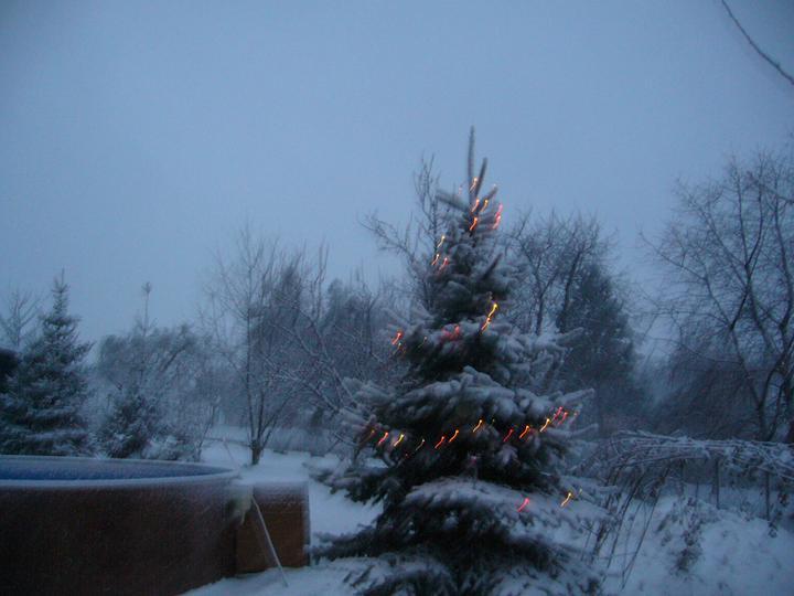Vánoce 2010 - Obrázek č. 16