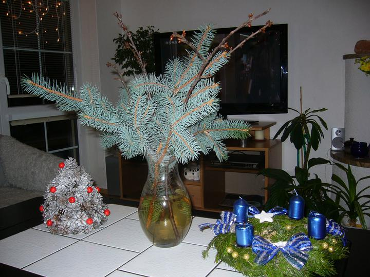 Vánoce 2010 - Obrázek č. 11
