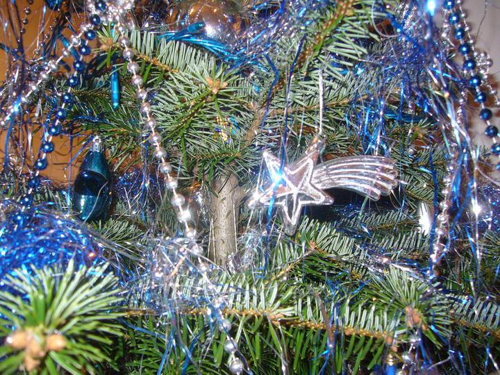 Vánoce 2010 - Obrázek č. 32