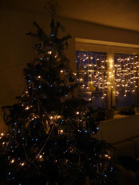 Vánoce 2010 - Obrázek č. 34