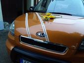 Výzdoba na auto nevěsty a ženicha - slunečnice.,