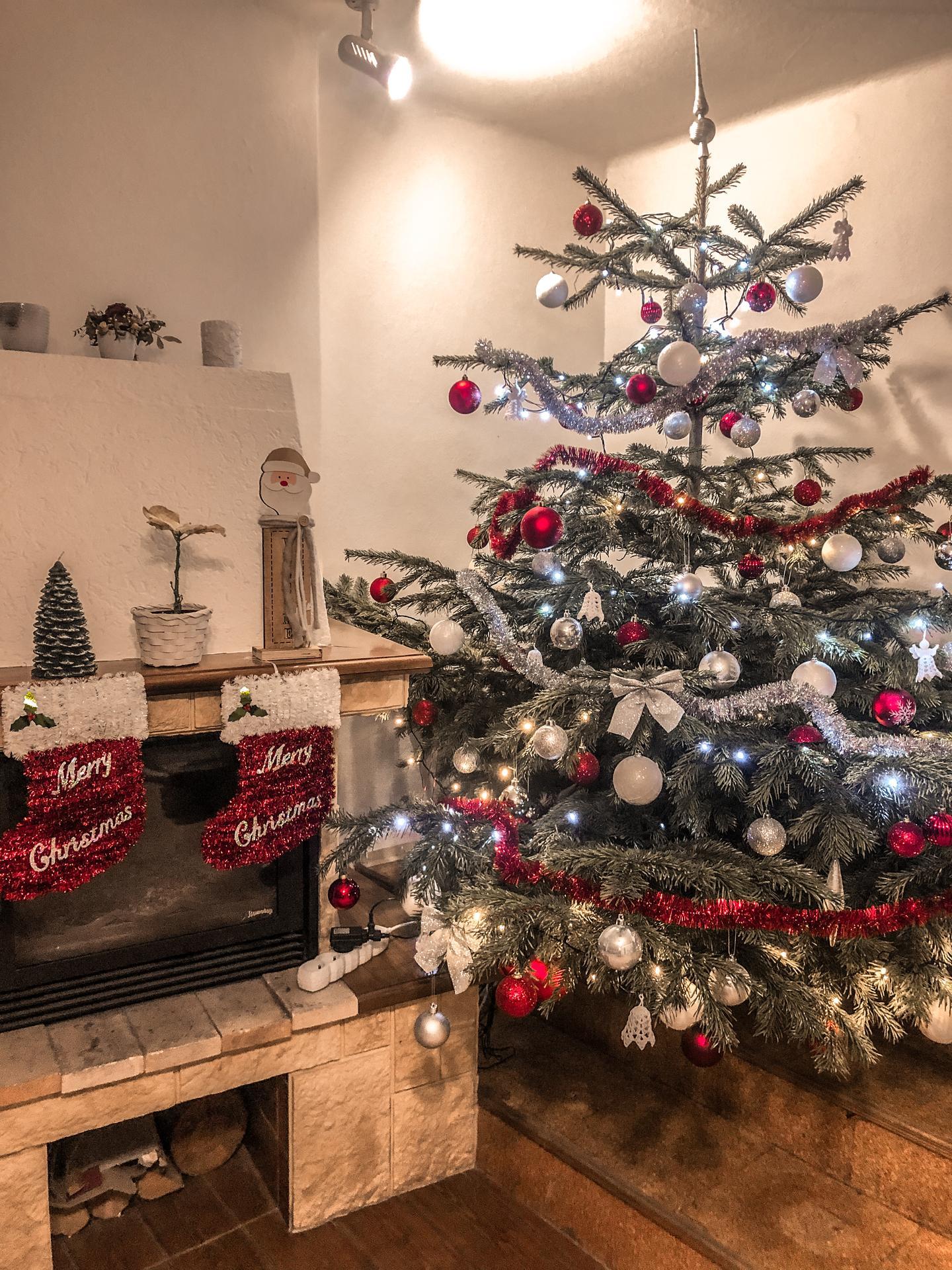 Je to ostuda, ale teprv dnes jsme likvidovali Vánoční stromeček.  Letos jsem se těch Vánoc neuměla vzdát 😅 - Obrázek č. 1