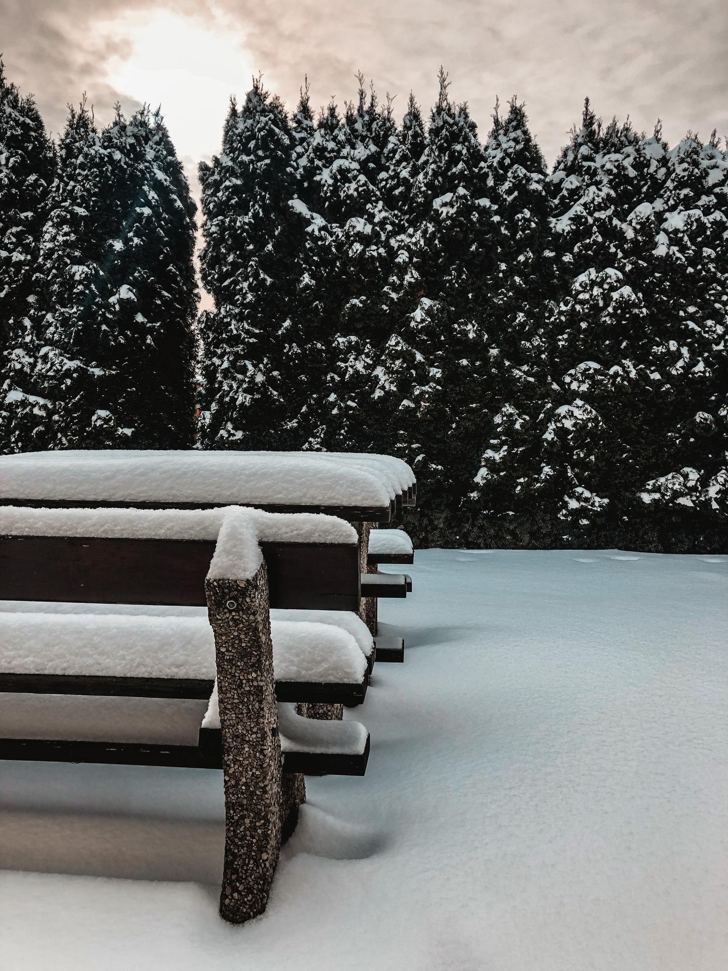 Tato zima je opravdu kouzelná. ☺️ - Obrázek č. 1