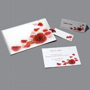 Nádherné svadobné  oznámenia - stiahnuté s nemeckej stránky