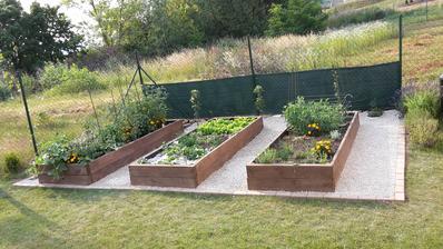 1.7.2015 - úžitková záhrada