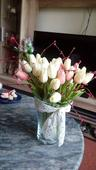 Květiny tulipány,