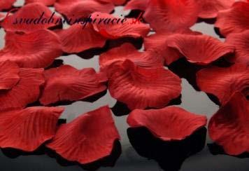 Lupienky ruží Bordové - 100 ks za 1 Eur - Obrázok č. 1