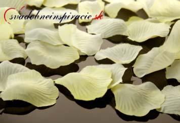 Lupienky ruží - smotanové - Obrázok č. 1