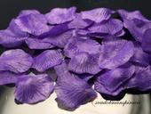 Lupienky ruží fialové - 100 ks za 1 Eur,