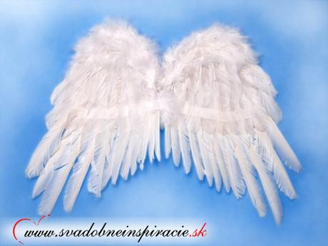 Anjelské krídla - Obrázok č. 1
