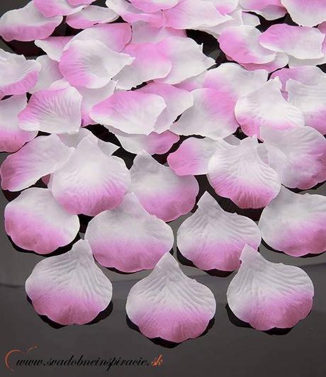 Lupene ruží - smotanovo-ružové - Obrázok č. 1