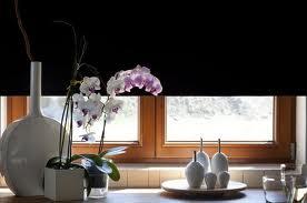 Asi tak nějak... - Vázy na okně.jpg