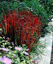 red barron