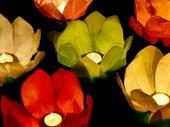 Plávajúce lampióny (6ks - mix farieb),