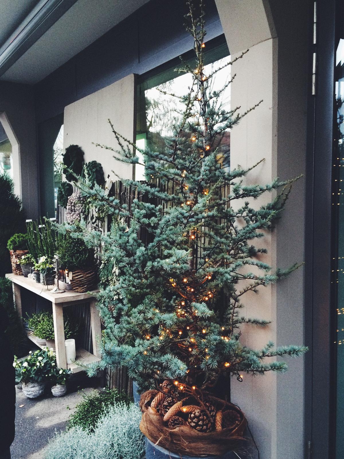 Vianocny.. - Obrázok č. 4