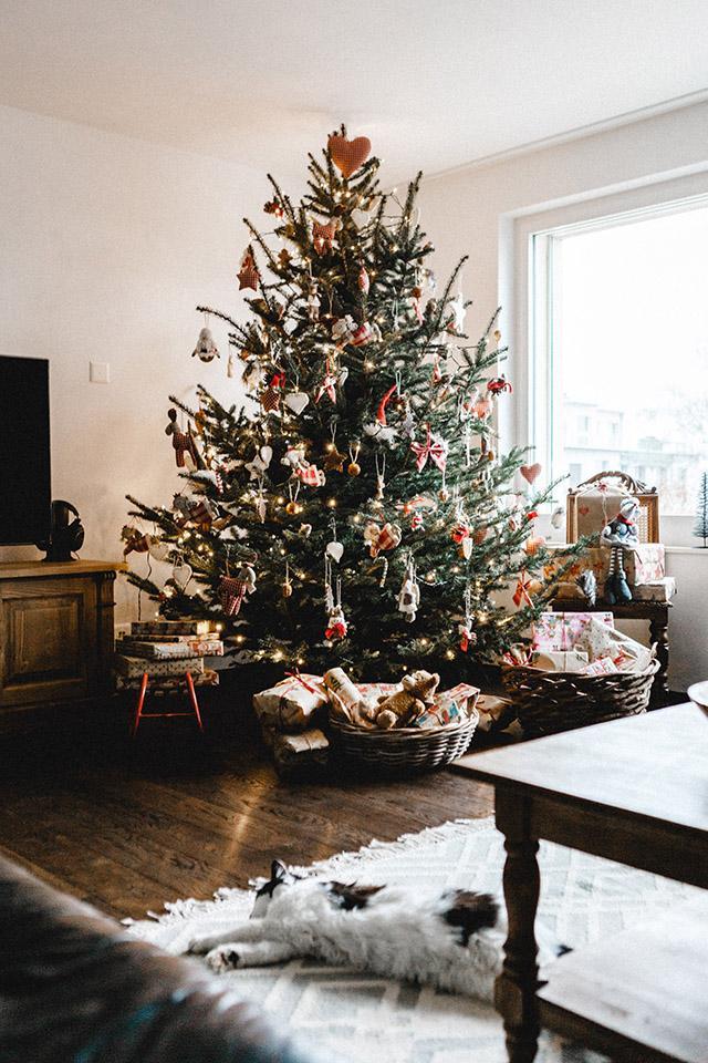 Vianoce 2016 - moje milovane.. normalne spava v rohu tam kde je strom..