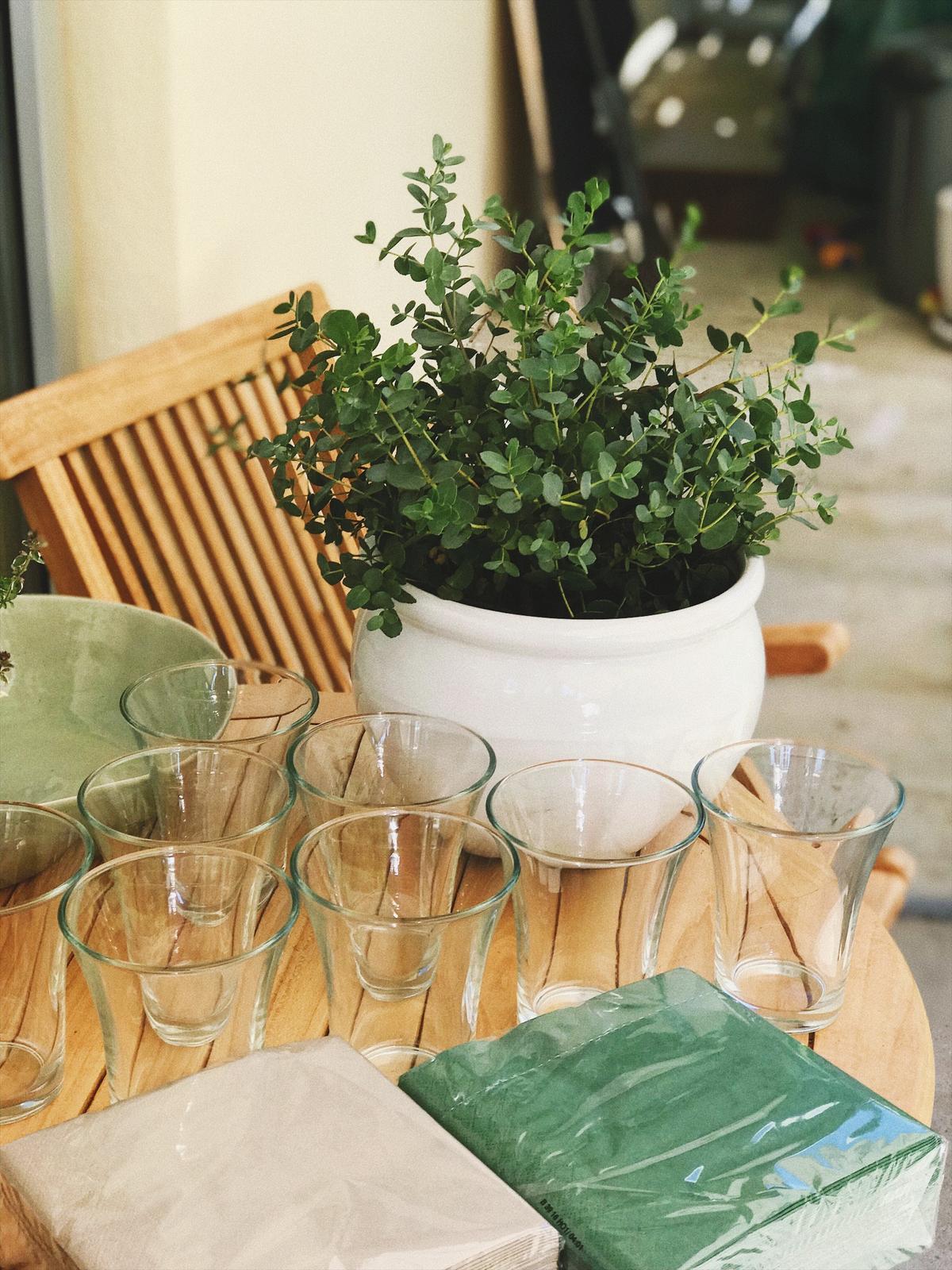 Terasa+ zahrada vzadu.. - Obrázok č. 5
