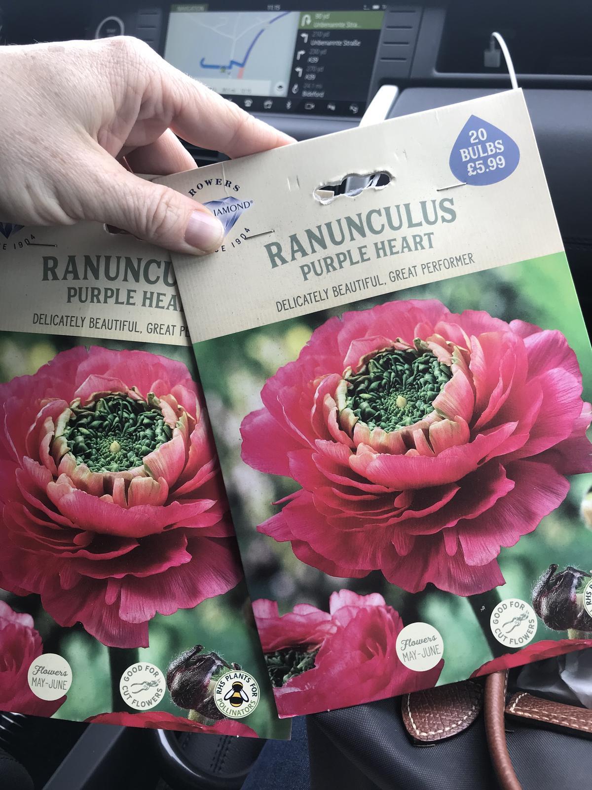 Moja kvetinova farma  :-) - Obrázok č. 91