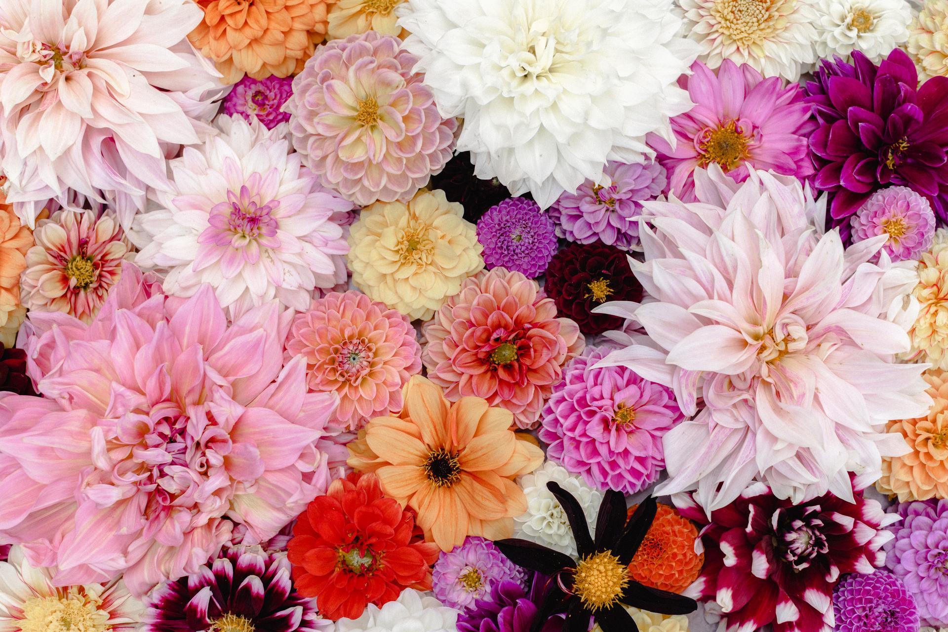 Kvetove dekoracie - Obrázok č. 15