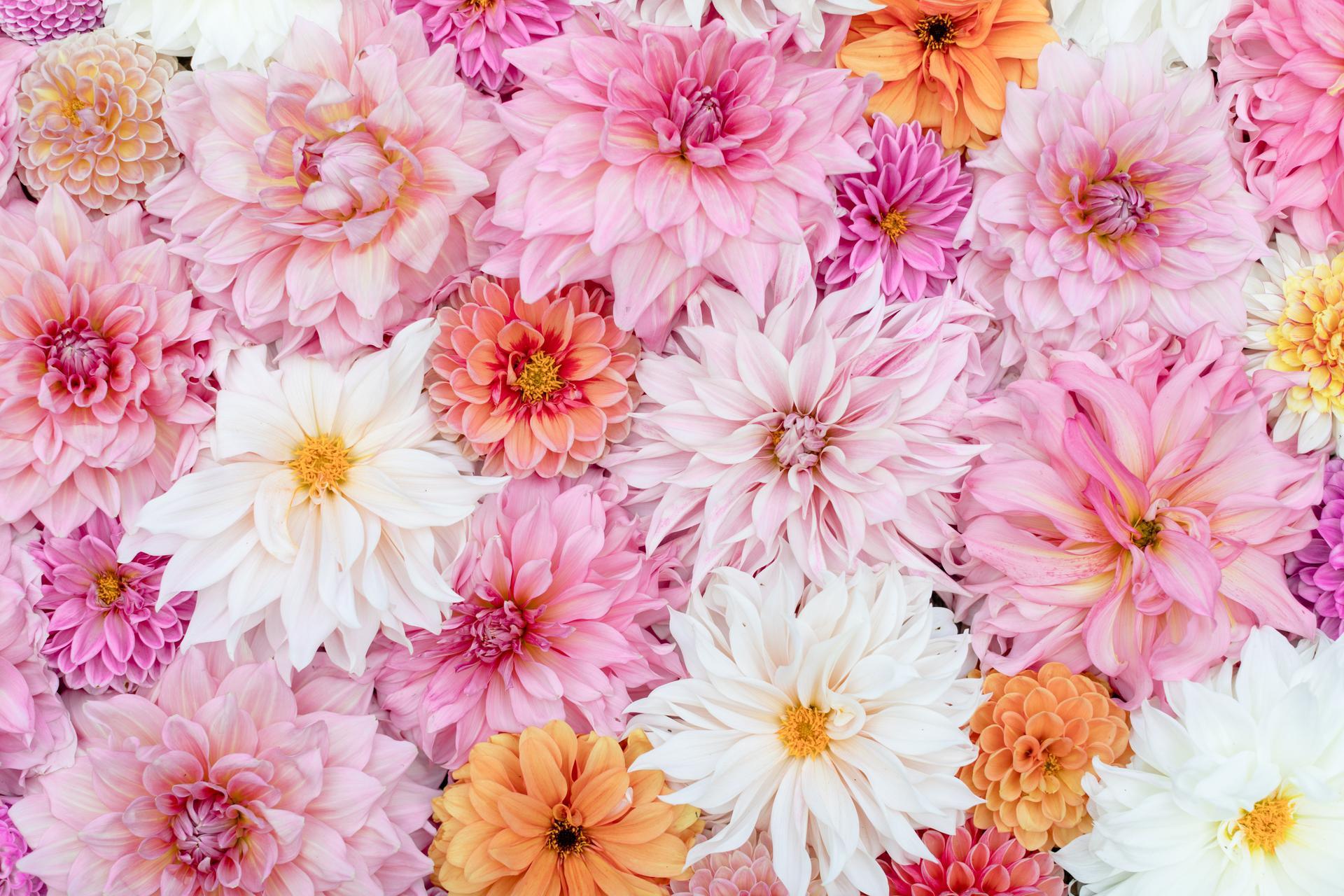 Kvetove dekoracie - Obrázok č. 17