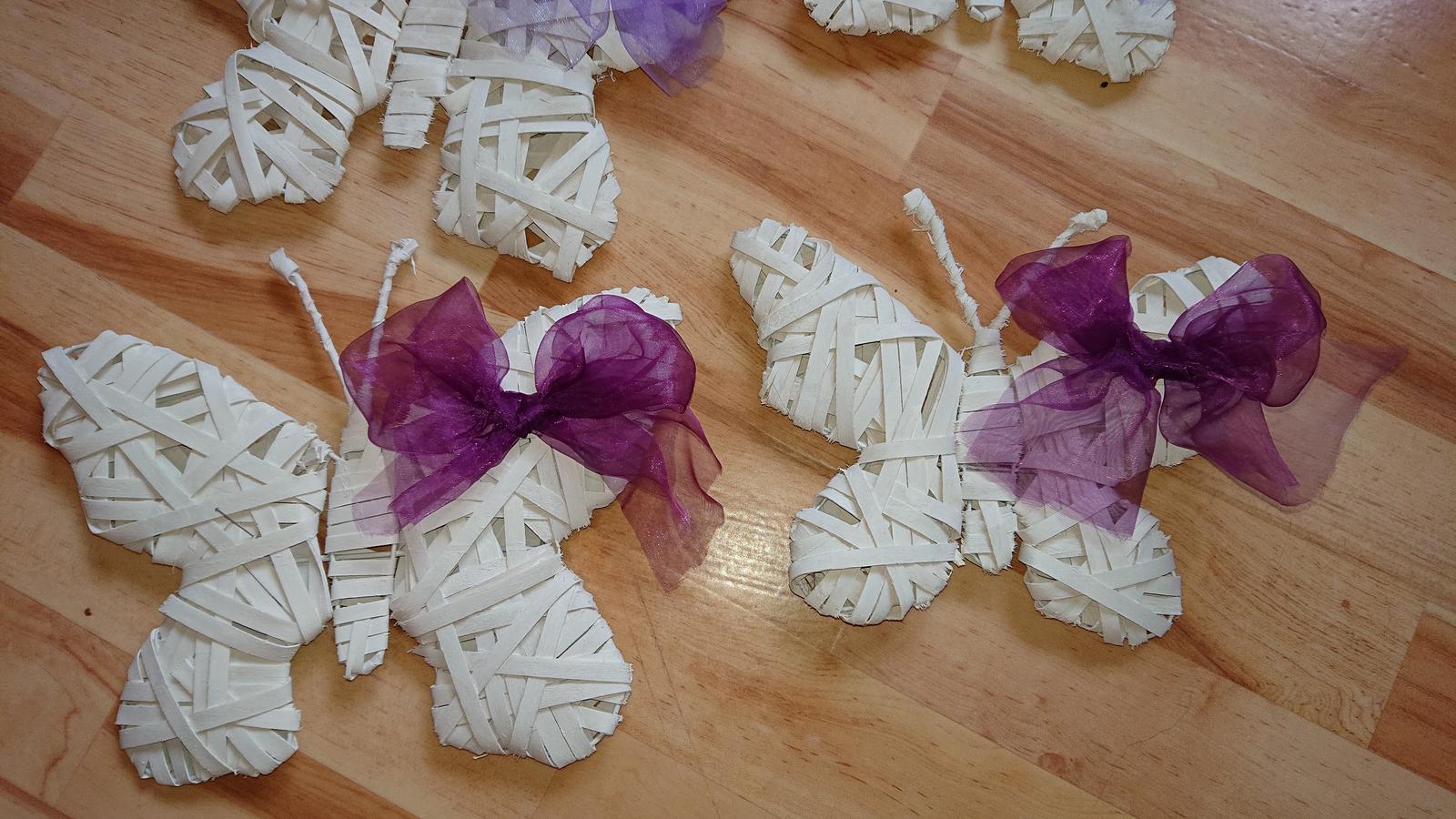 Motýli z ratanu  - Obrázek č. 1