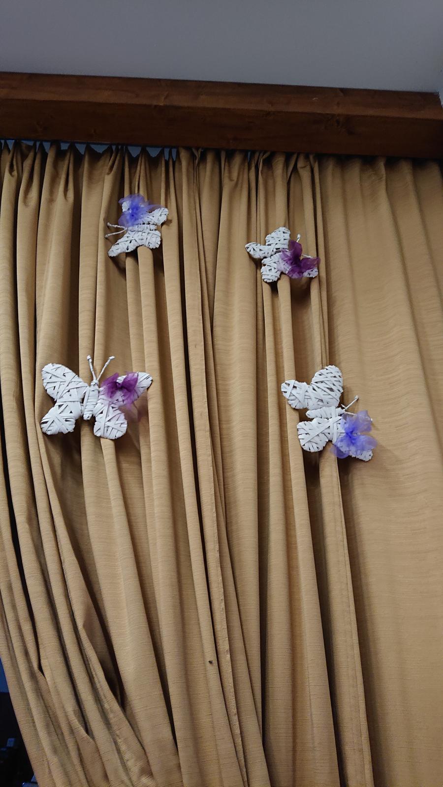 Motýli z ratanu  - Obrázek č. 3