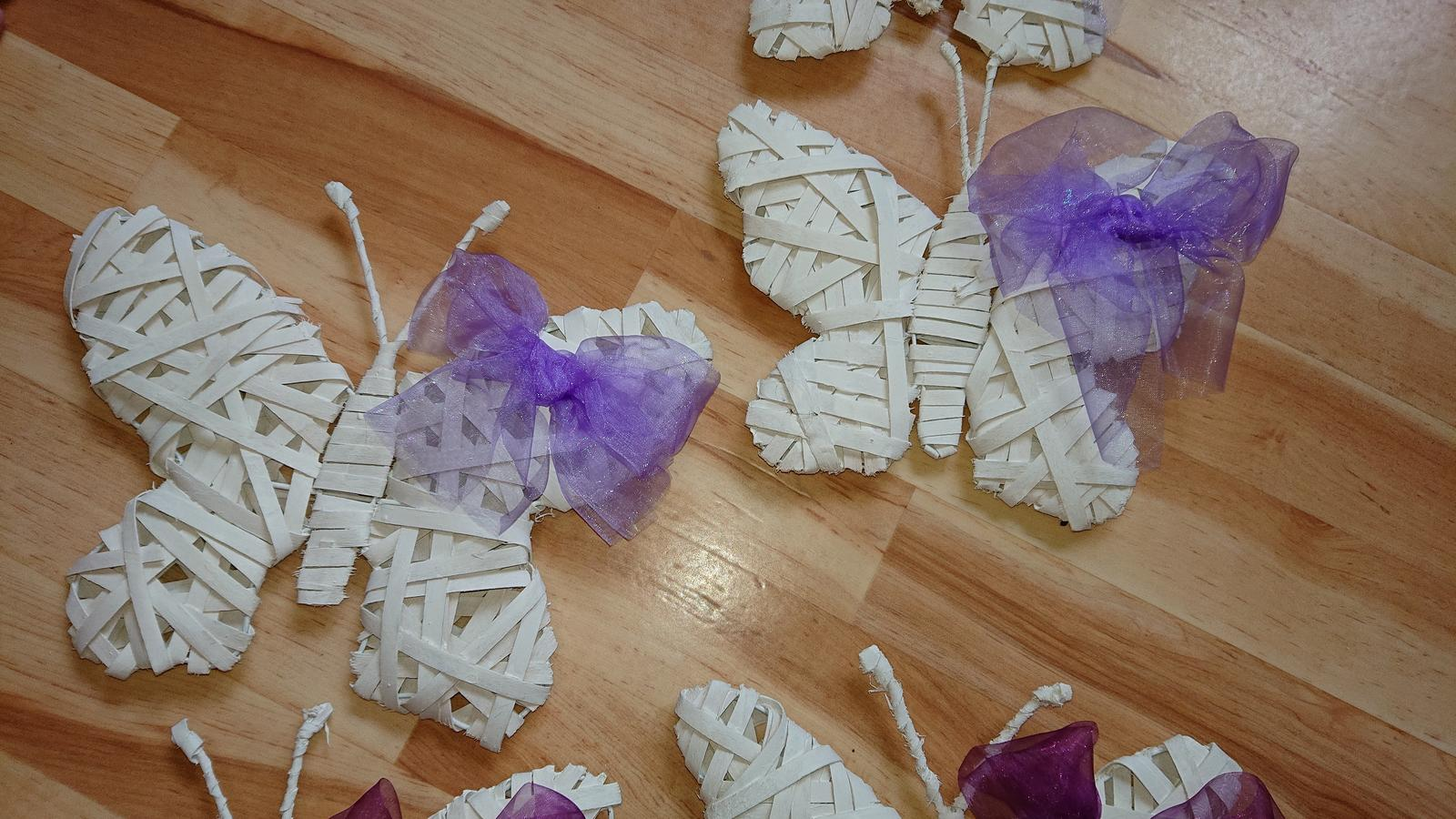 Motýli z ratanu  - Obrázek č. 4