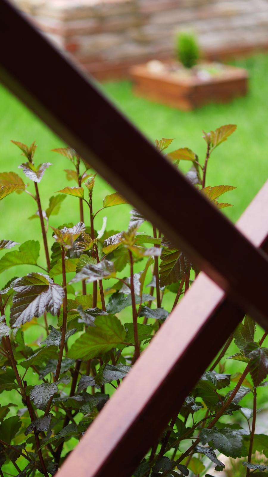 Náš domček ♡ Bramasole ♡ ... Stilo interiér aj exteriér 3. rok bývania - Obrázok č. 77
