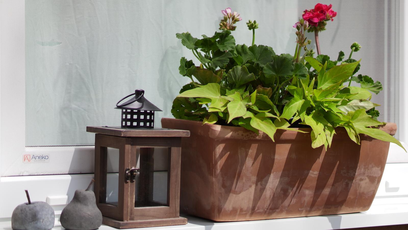 Náš domček ♡ Bramasole ♡ ... Stilo interiér aj exteriér 3. rok bývania - Obrázok č. 83