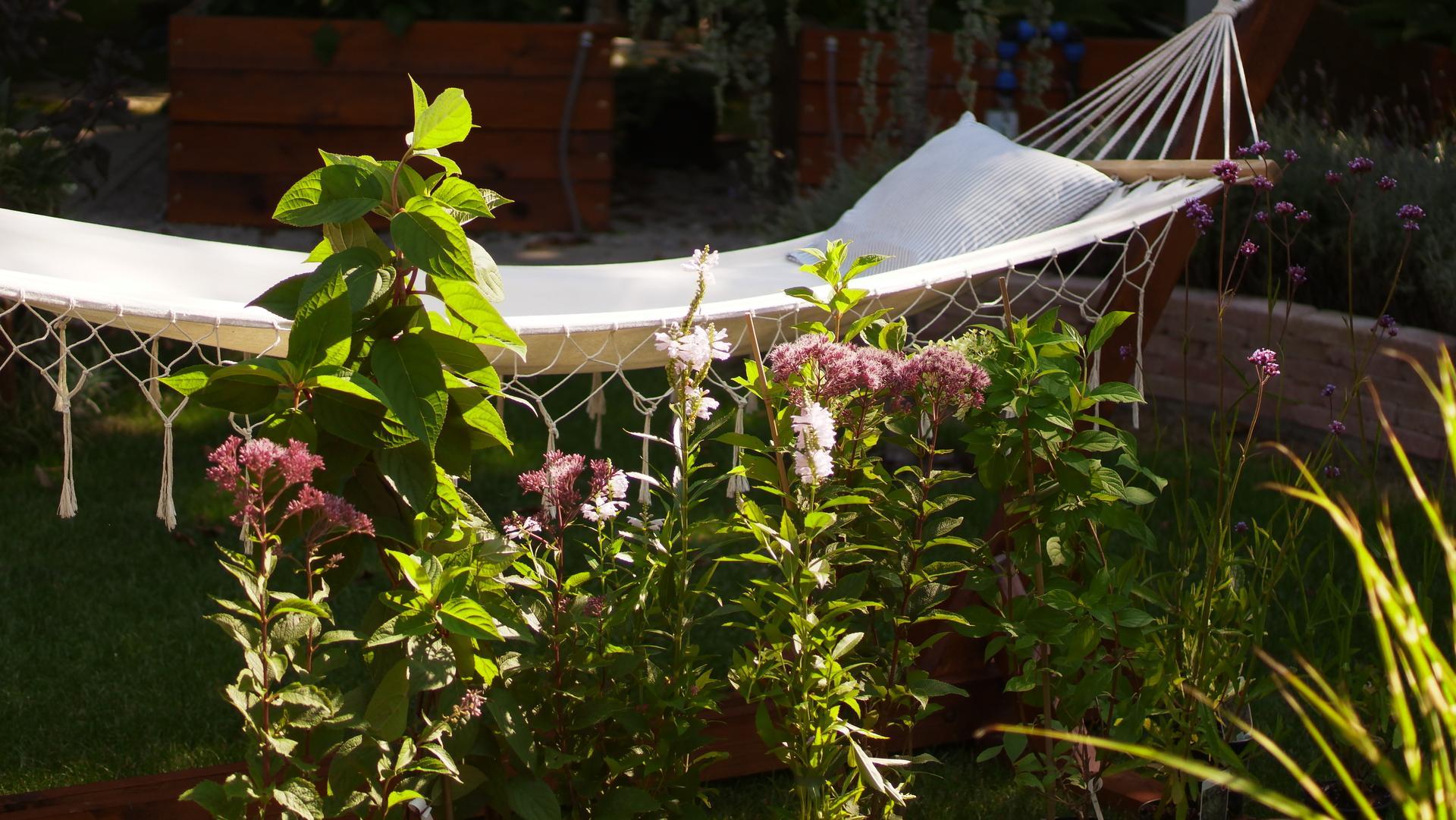 Relaxačný domček sauna a oddychová miestnosť ... plány, príprava a realizácia - Obrázok č. 22