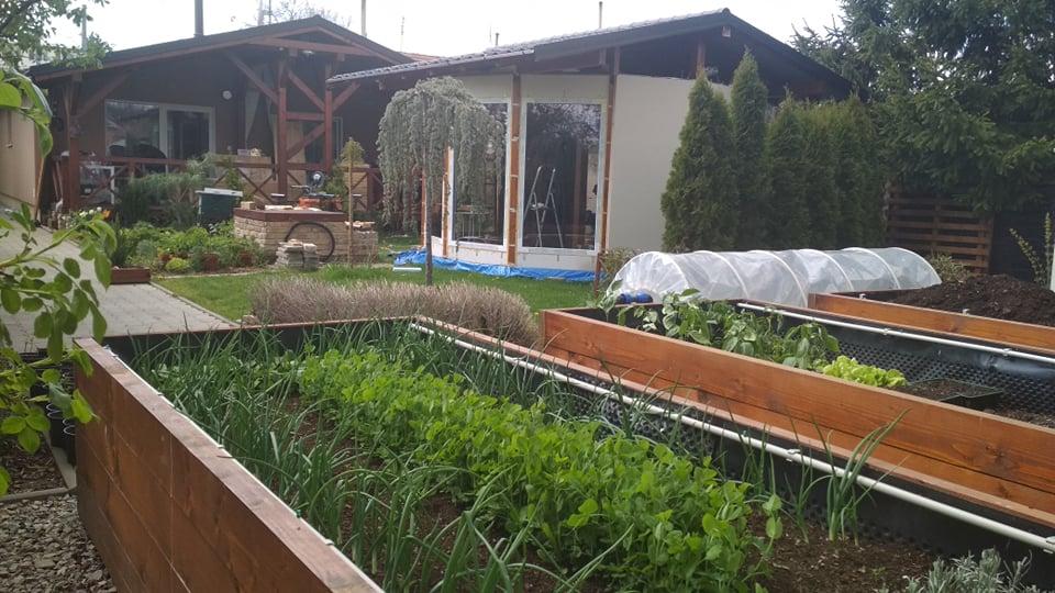 Vyvýšené záhony a úžitková záhrada - sezóna 2021 ... príprava, sadenie, starostlivosť - Obrázok č. 34