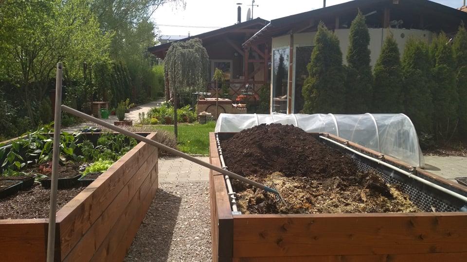 Vyvýšené záhony a úžitková záhrada - sezóna 2021 ... príprava, sadenie, starostlivosť - Obrázok č. 29