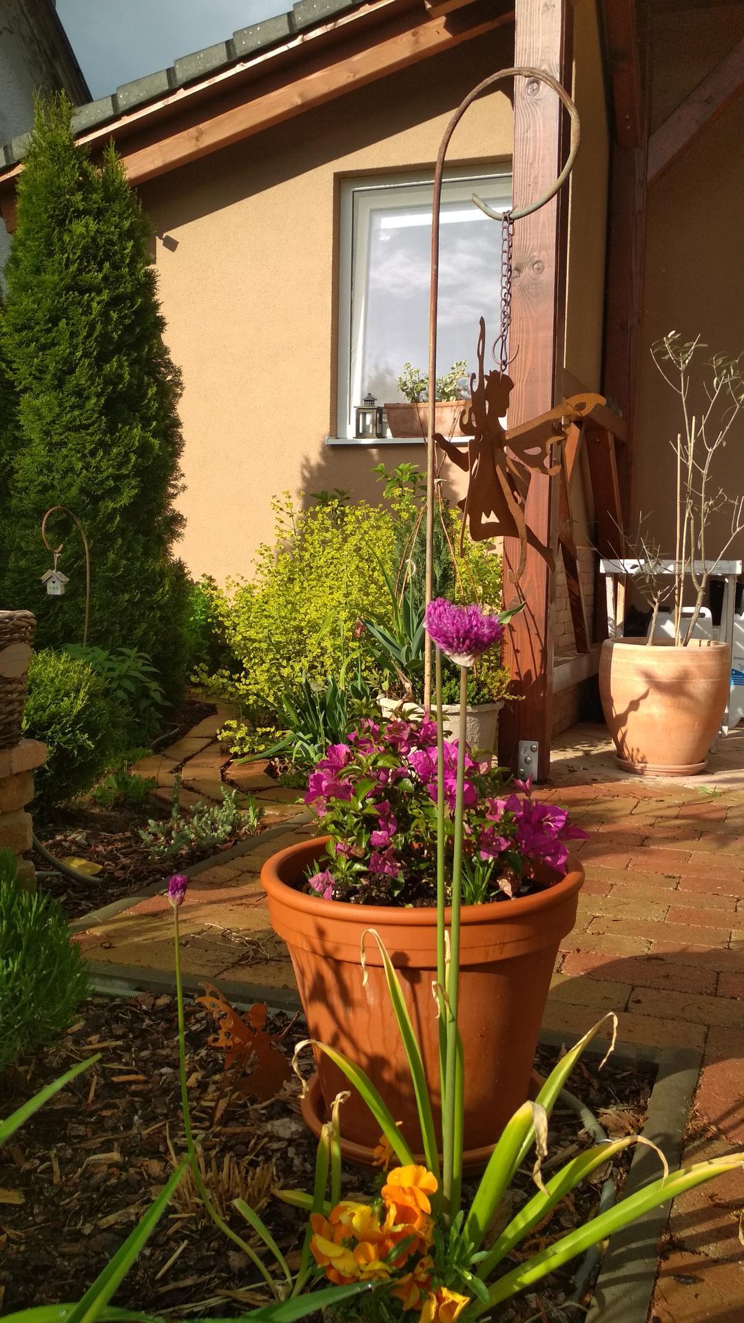 záhrada vidiecka, farebná rok 2021 - Obrázok č. 45