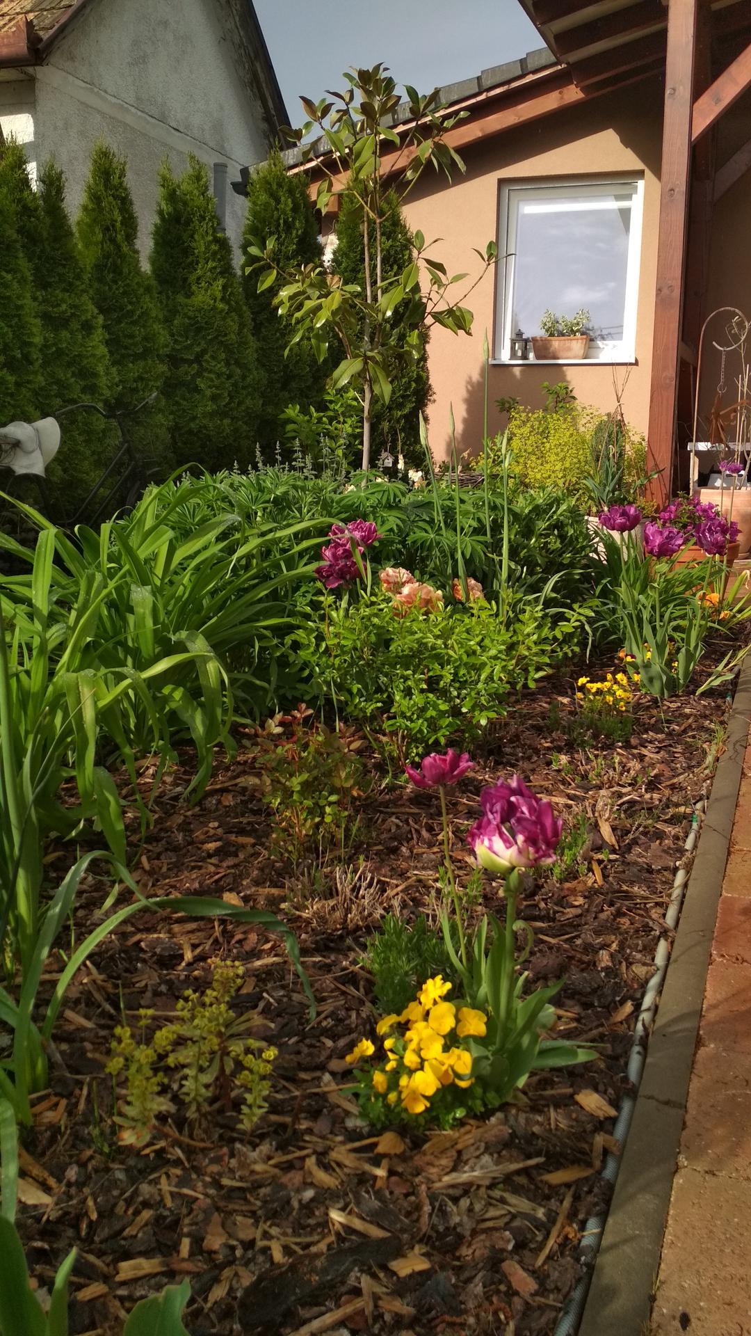 záhrada vidiecka, farebná rok 2021 - Obrázok č. 57