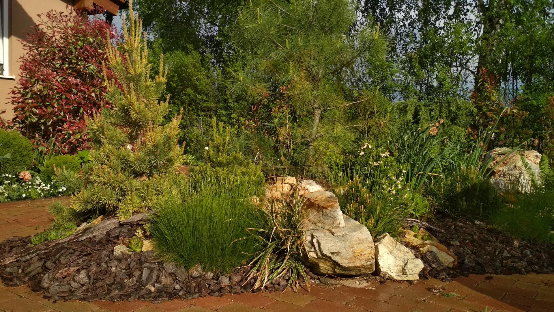 záhrada vidiecka, farebná rok 2021 - Obrázok č. 47
