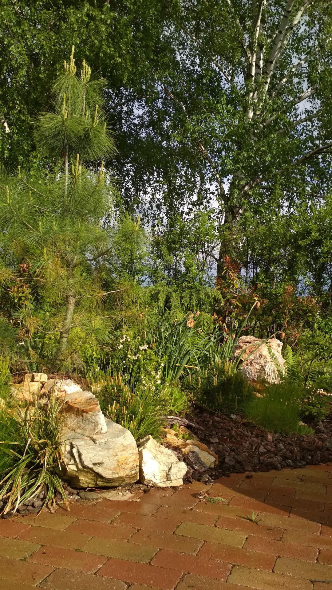 záhrada vidiecka, farebná rok 2021 - Obrázok č. 46