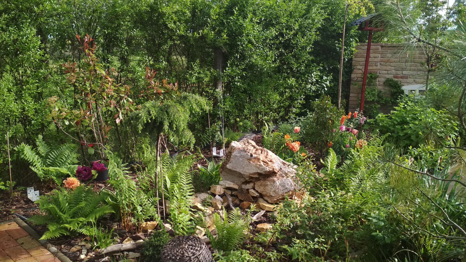 záhrada vidiecka, farebná rok 2021 - Obrázok č. 58